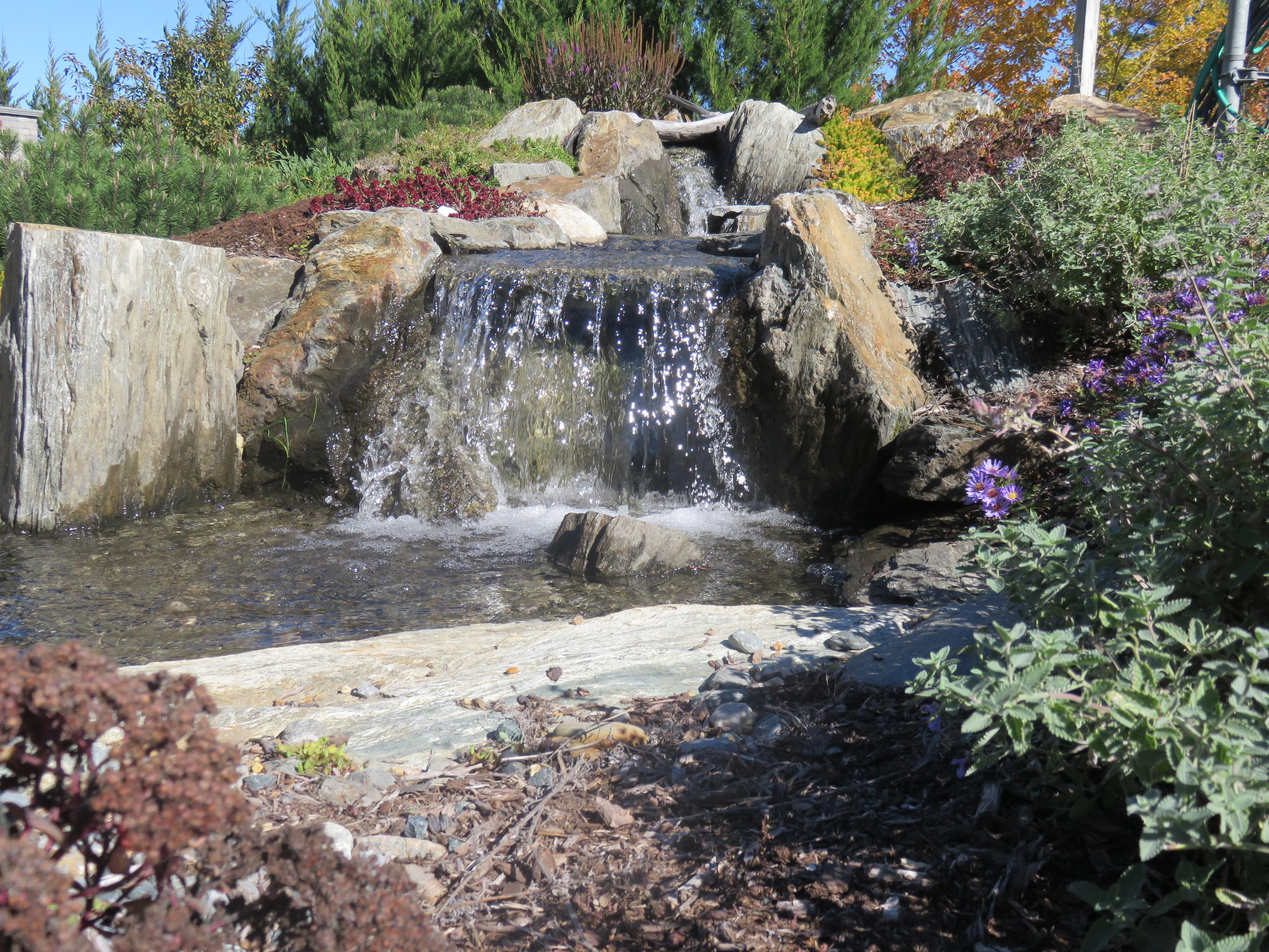 100 backyard streams phoenix pond blog the pond for Landscaping rocks harrisburg pa